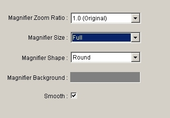MaxView - zoom ('magnifier') settings.jpg
