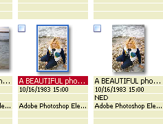 Left is full size, right is cropped (by FastStone) (see below), but thumbnails unchanged in XnView